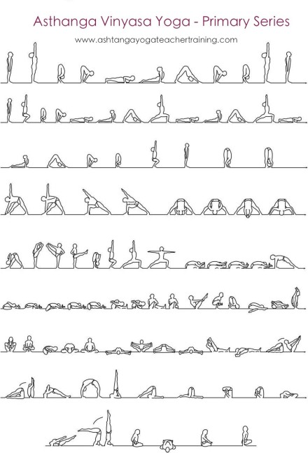 ashtanga yoga primary series yoga teacher training chart